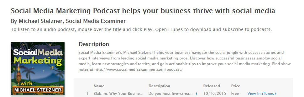 Michael Stelzner's podcast is the best in the market