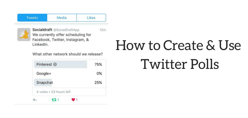 How to use the twitter poll feature