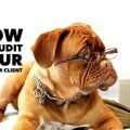 How to craft a social media audit