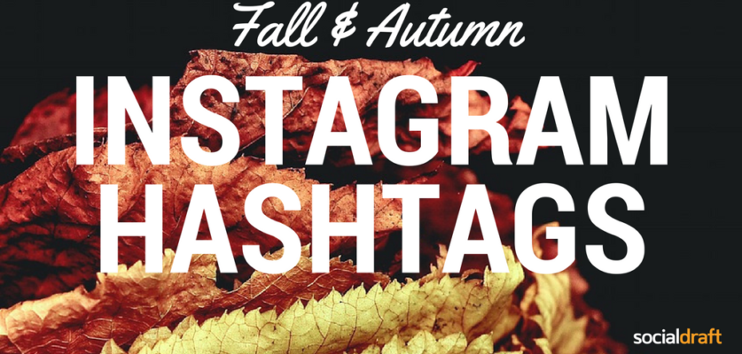 Fall hashtags for Instagram and how to use them