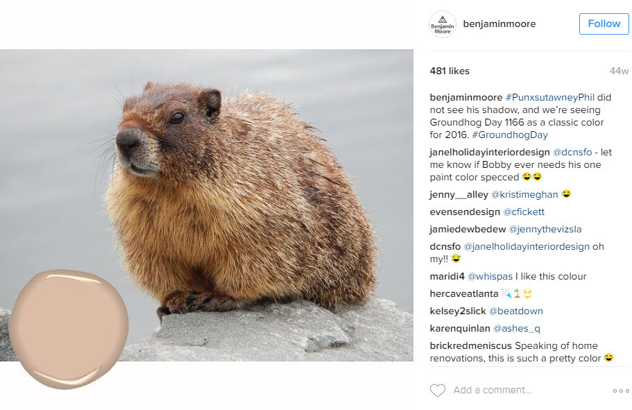 Promote your Groundhog day items on Instagram