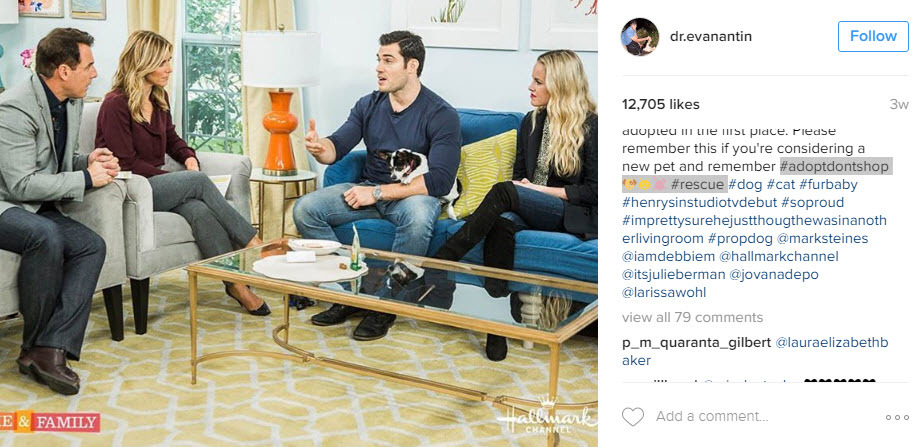 Industry hashtags will increase conversion on your dog Instagram posts