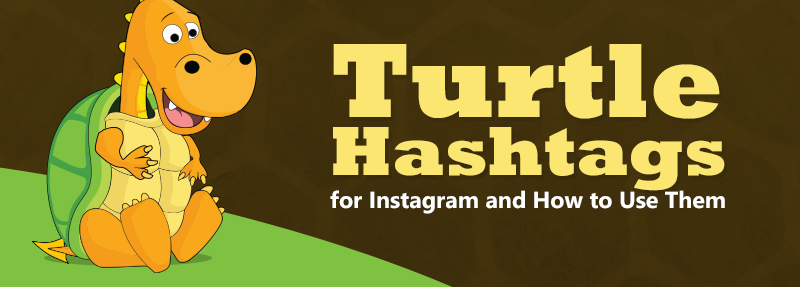 These optimized turtle hashtags will get you more likes and comments on Instagram