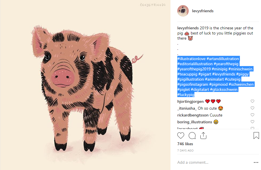 Year of the Pig Hashtags